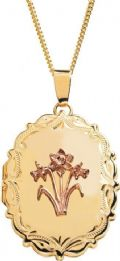 "Cymru Gold 9carat Daffodil Locket Incorporating Rare Welsh Gold 18"" Curb Chain"